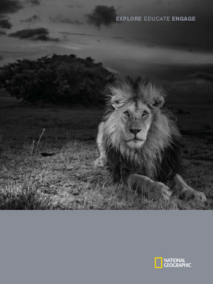 cover: dramatic b/w photo of lion at night